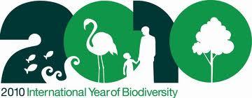 biodiversity2010_l1